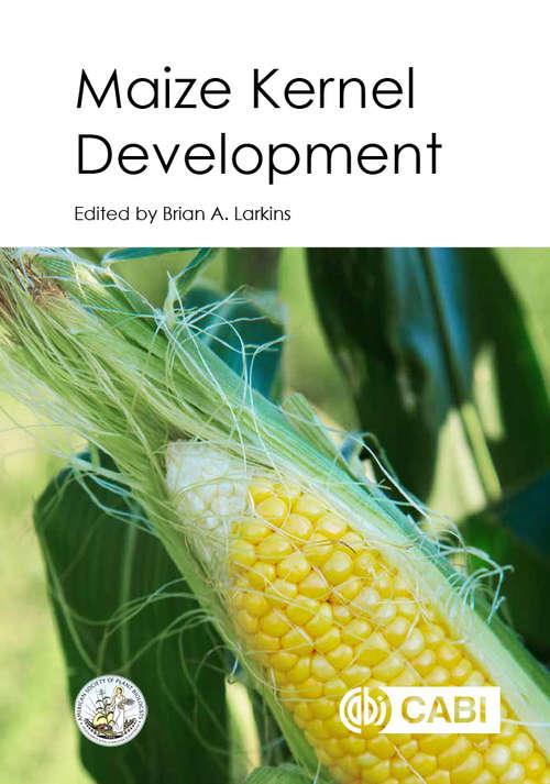 Maize Kernel Development