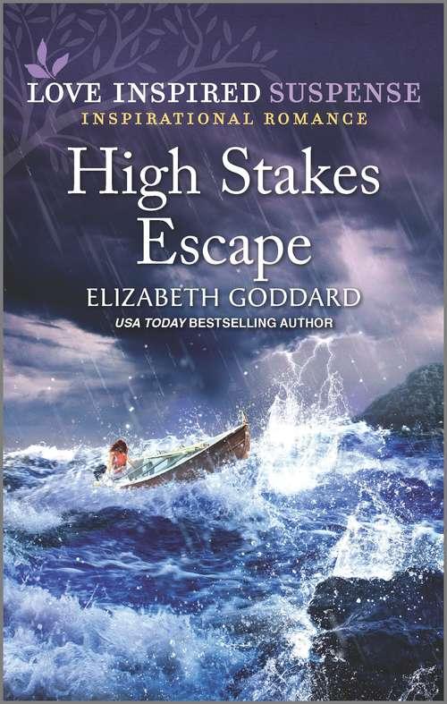 High Stakes Escape (Mount Shasta Secrets #4)