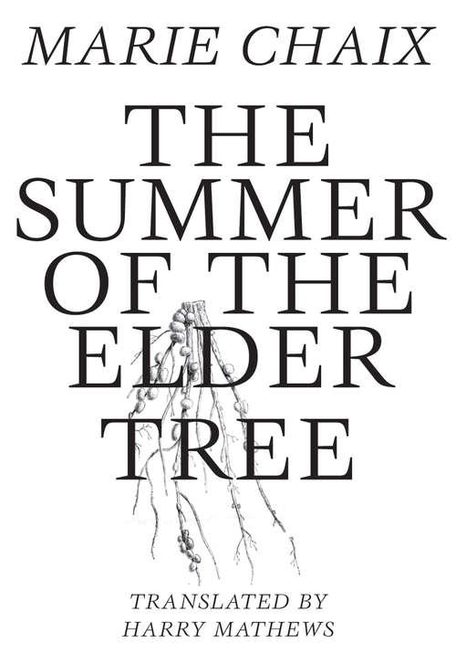 Summer of the Elder Tree