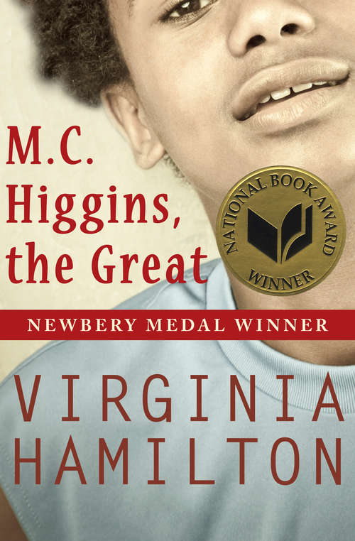 Collection sample book cover M.C. Higgins, the Great by Virginia Hamilton