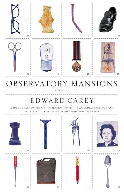 Observatory Mansions: A Novel (Vintage Contemporaries)
