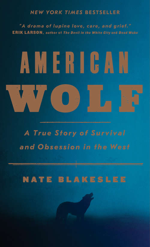 Collection sample book cover American Wolf by Nate Blakeslee