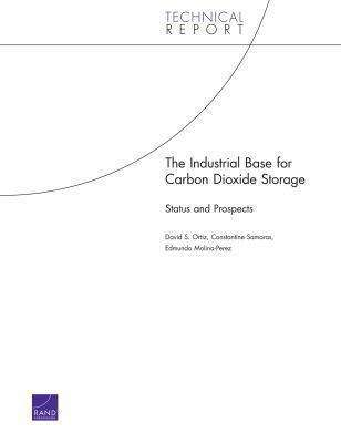The Industrial Base for Carbon Dioxide Storage: Status and Prospects