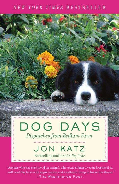 Dog Days: Dispatches from Bedlam Farm