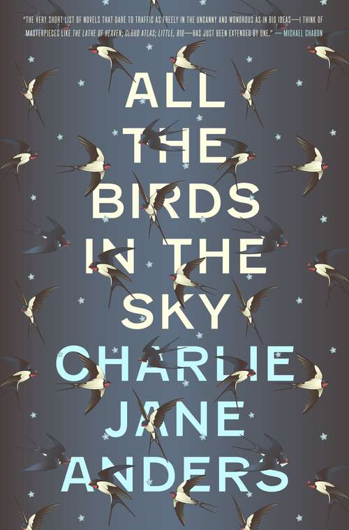 Collection sample book cover All the Birds in the Sky, Typographic cover design with small swallows in front and starry background behind