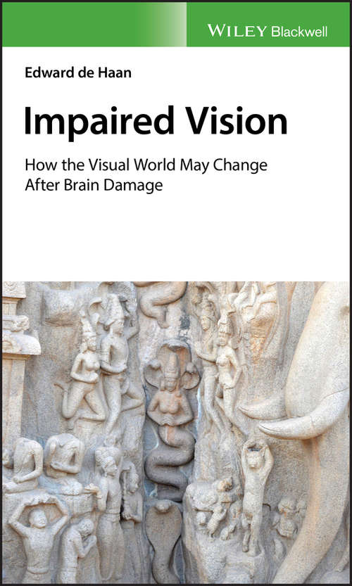Impaired Vision: How the Visual World May Change after Brain Damage