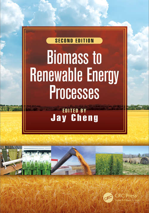 Biomass to Renewable Energy Processes