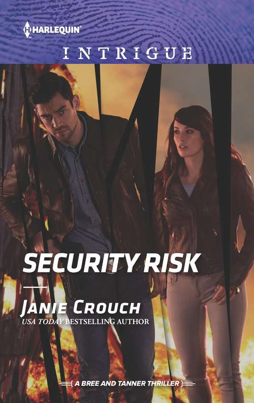 Security Risk (The Risk Series: A Bree and Tanner Thriller #2)