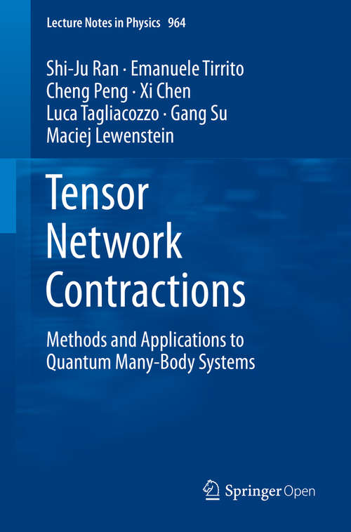 Tensor Network Contractions: Methods and Applications to Quantum Many-Body Systems (Lecture Notes in Physics #964)