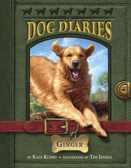 Dog Diaries #1: Ginger (Dog Diaries #1)