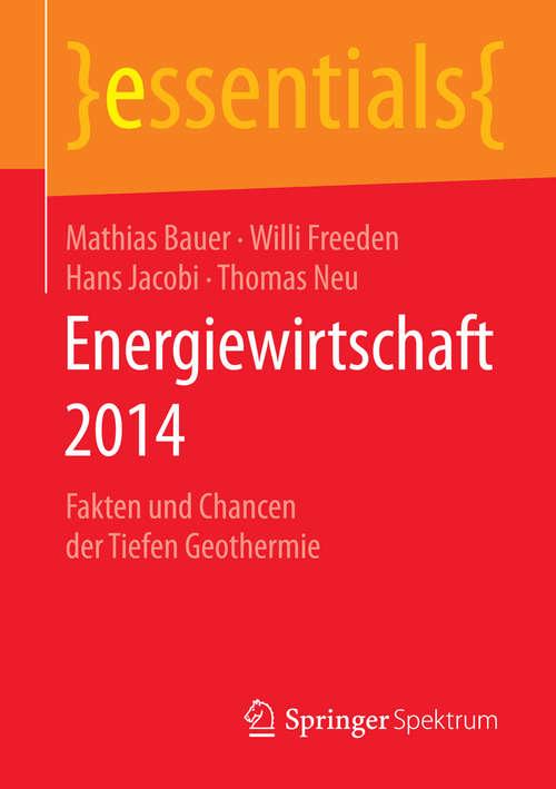 Energiewirtschaft 2014: Fakten und Chancen der Tiefen Geothermie (essentials)