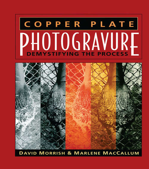 Copper Plate Photogravure: Demystifying the Process (Alternative Process Photography Ser.)