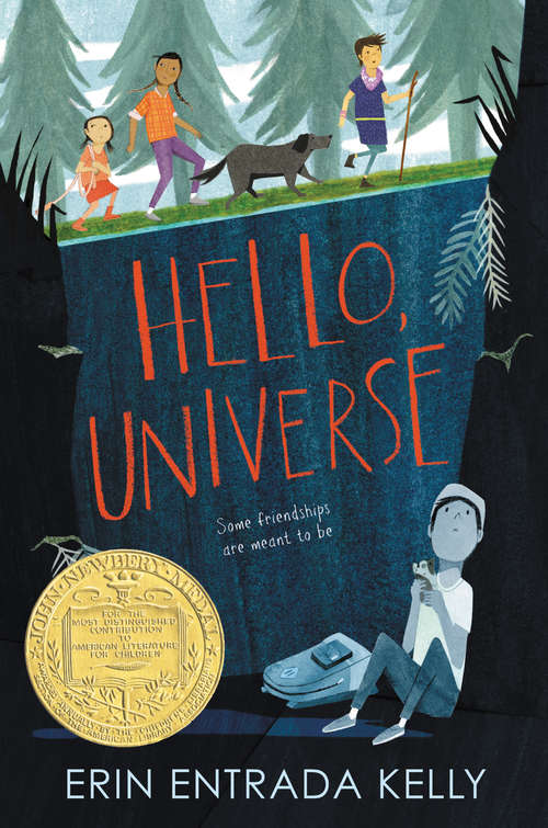 Collection sample book cover Hello, Universe, boy sitting alone in a dark forest
