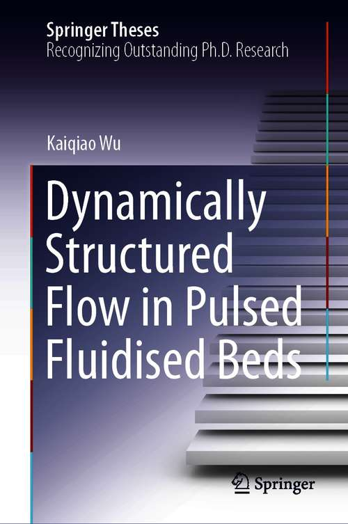 Dynamically Structured Flow in Pulsed Fluidised Beds (Springer Theses)