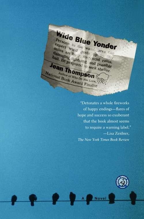 Wide Blue Yonder: A Novel