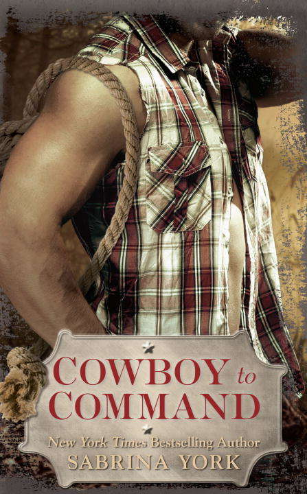 Cowboy to Command (Stripped Down #2)