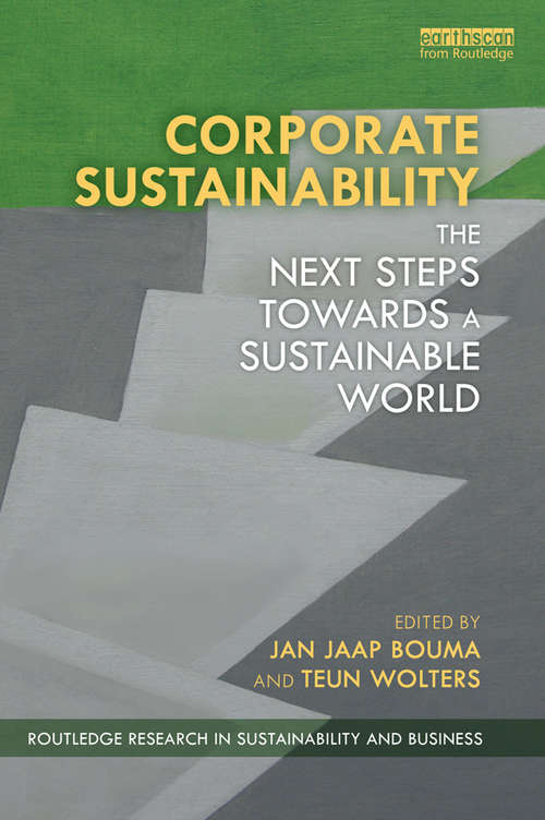 Corporate Sustainability: The Next Steps Towards a Sustainable World (Routledge Research in Sustainability and Business)