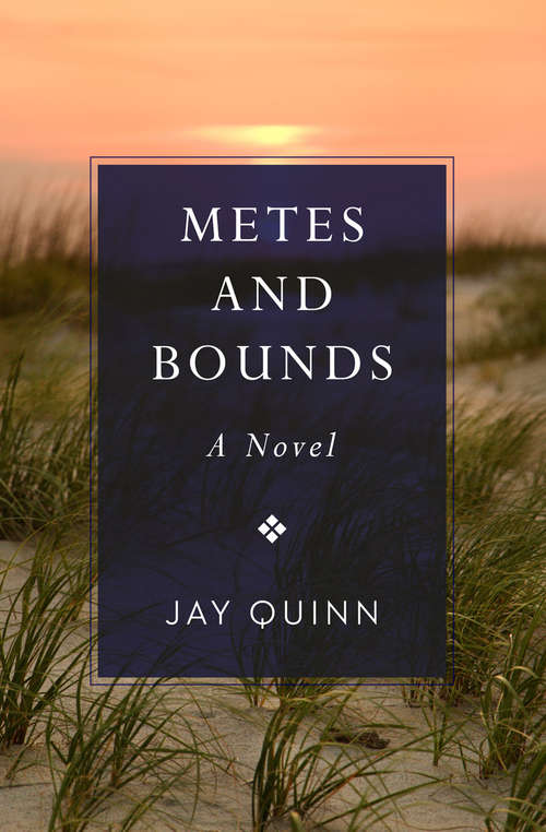 Metes and Bounds: A Novel (Southern Tier Ser.)