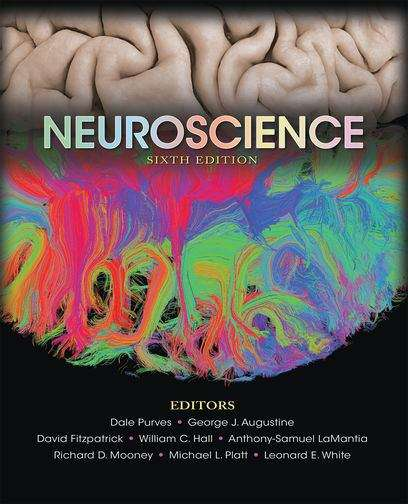 Neuroscience (Sixth Edition)