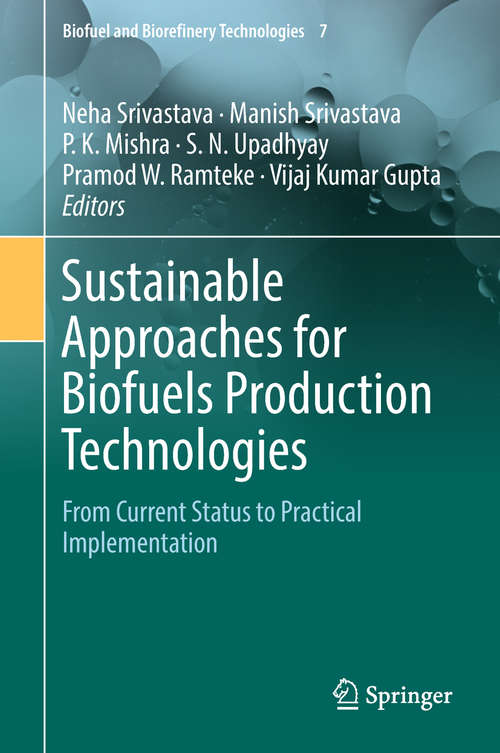 Sustainable Approaches for Biofuels Production Technologies: From Current Status to Practical Implementation (Biofuel and Biorefinery Technologies #7)
