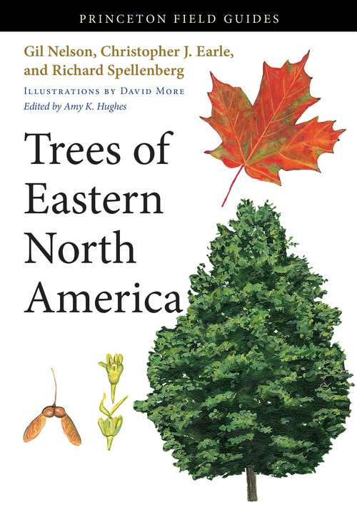 Trees Of Eastern North America (Princeton Field Guides #91)