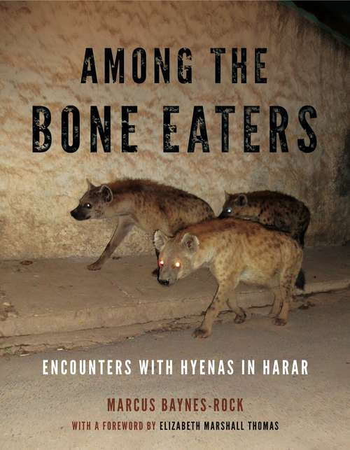Among the Bone Eaters: Encounters with Hyenas in Harar (Animalibus: Of Animals and Cultures #8)