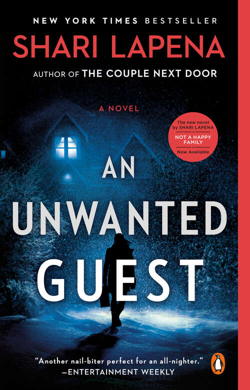 Collection sample book cover An Unwanted Guest, a cabin in the woods at winter
