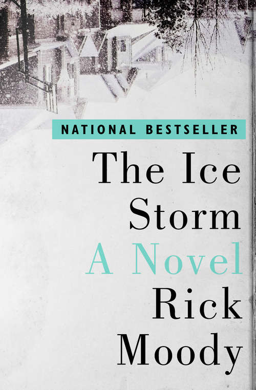 The Ice Storm: A Novel (Shooting Script Ser.)