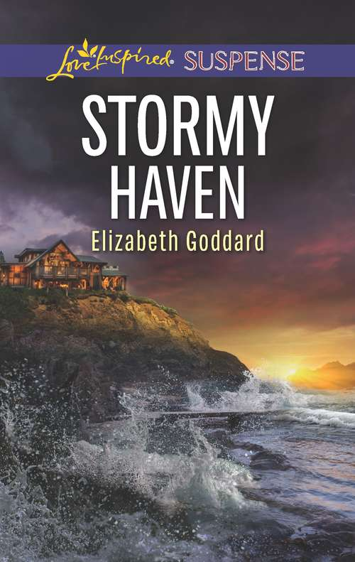 Stormy Haven: Stormy Haven Lethal Legacy Defense Breach (Coldwater Bay Intrigue)
