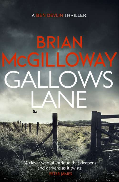 Gallows Lane: An ex con and drug violence collide in the borderlands of Ireland...