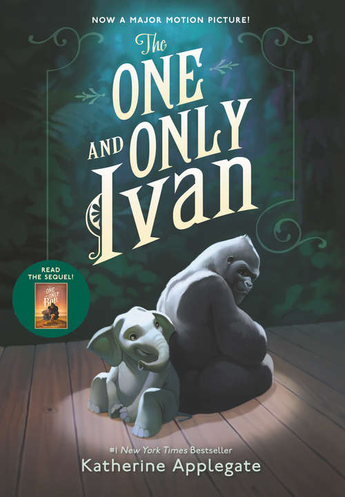 Collection sample book cover The One and Only Ivan