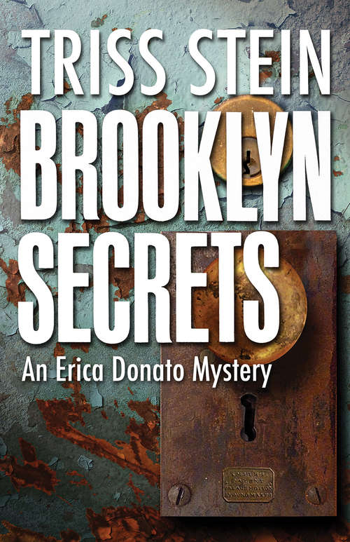 Brooklyn Secrets: An Erica Donato Mystery (Erica Donato Mysteries #3)
