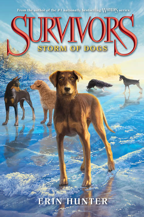 Storm of Dogs (Survivors: 6)