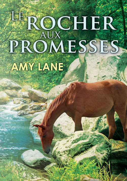 Le rocher aux promesses (Promesses #1)