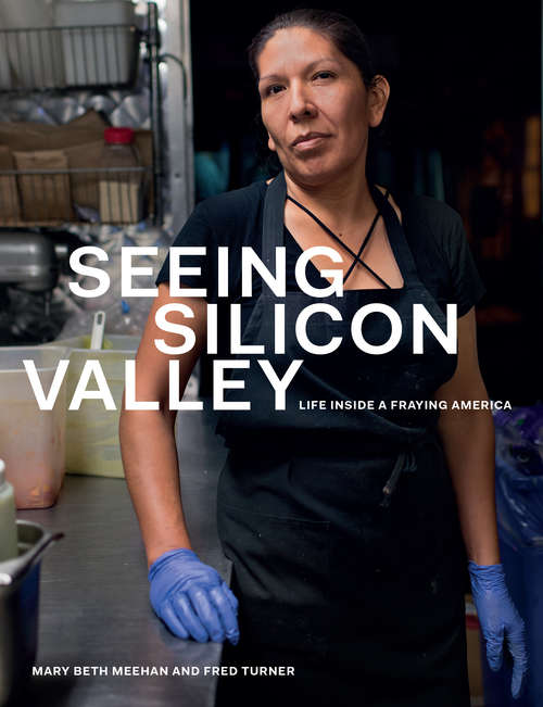Seeing Silicon Valley: Life inside a Fraying America