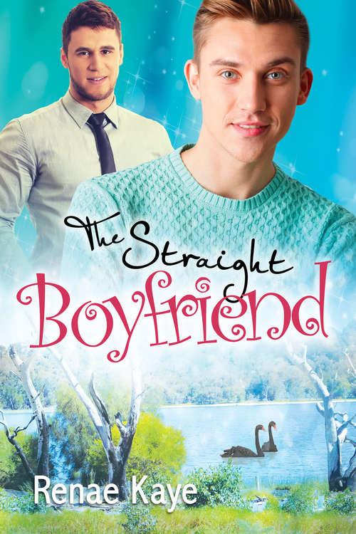 The Straight Boyfriend (Loving You #3)