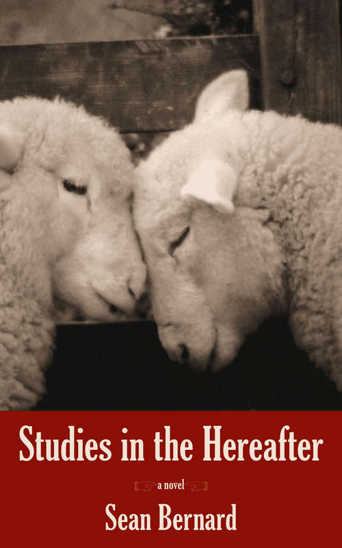 Studies in the Hereafter: A Novel