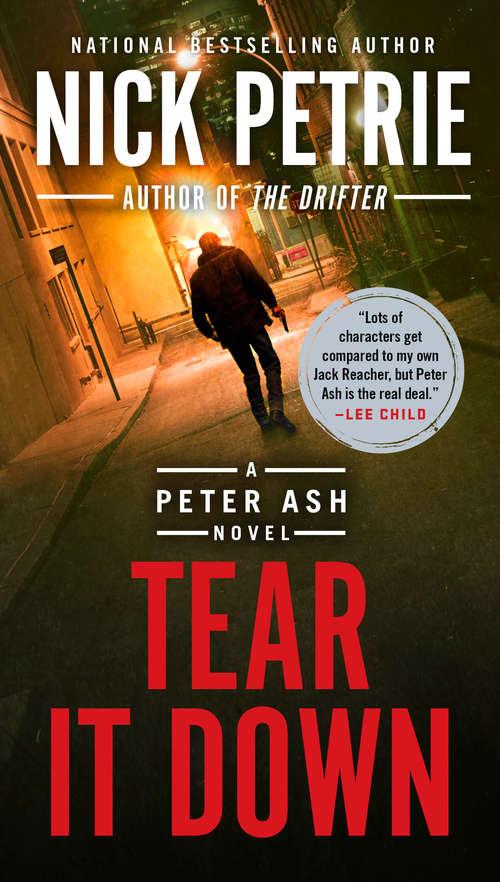 Tear It Down (A Peter Ash Novel #4)