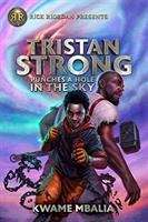 Collection sample book cover Tristan Strong Punches A Hole In The Sky (Tristan Strong #1) by Kwame Mbalia