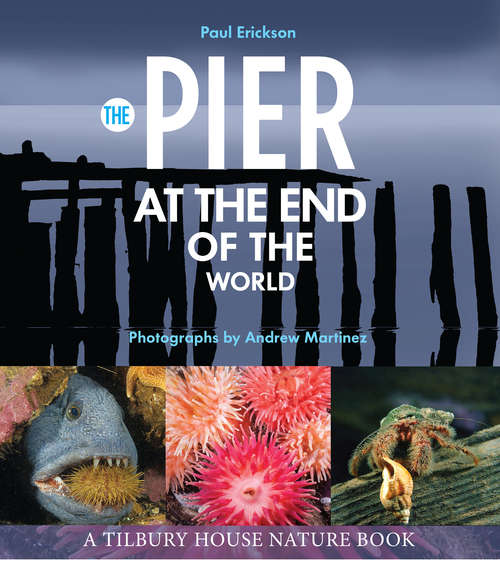 The Pier at the End of the World (Tilbury House Nature Book #0)