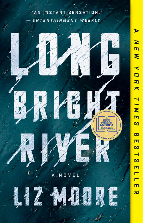 Collection sample book cover Long Bright River by Liz Moore