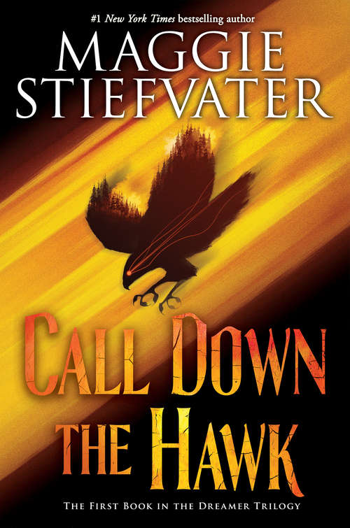 Call Down the Hawks by Maggie Stiefvater