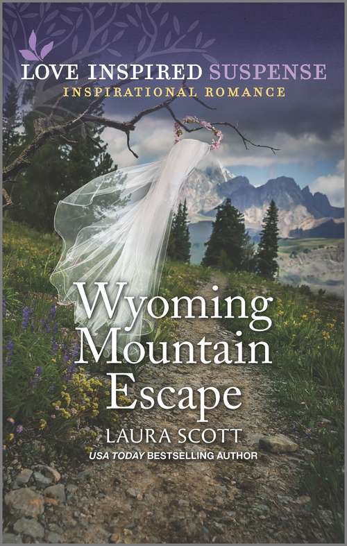 Wyoming Mountain Escape (Justice Seekers #3)